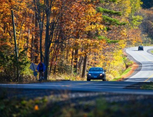 Five Autumn Driving Tips to Keep You Safe